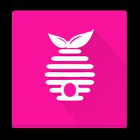 Oddělky a včelstva